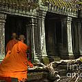 Ta Prohm Cambodia by Bob Christopher