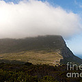 Table Mountain National Park by Fabrizio Troiani