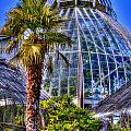 Tacoma Botanical Conservatory by David Patterson