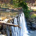 The Dam At Cedarock by Lane Watson