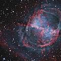 The Dumbbell Nebula by R Jay GaBany