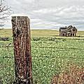 The Old Farm House by Steve McKinzie