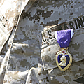 The Purple Heart Award Hangs by Stocktrek Images
