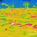 Thermogram Of Cars In A Parking Lot by Ted Kinsman
