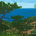 Torrey Pines Trails by L J Oakes