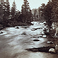 Truckee River - California - C 1865 by International  Images