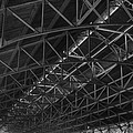Trussed Roof by Dennis Dame