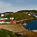 Two Good Arms Newfoundland by Barbara McMahon