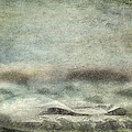 Under The Sea by Trish Tritz