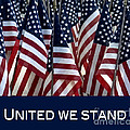 United We Stand by Nancy Greenland