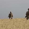 U.s. Marines Patrol A Wadi Near Kunduz by Terry Moore