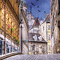 Vienna Cobblestone Alleys And Forgotten Streets by Juli Scalzi