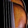 Violin Isolated On Black by M K  Miller