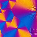 Vitamin H Crystal by Michael W Davidson