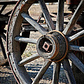 Wagon Wheel by Athena Mckinzie