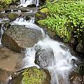 Water Cascading Over Rocks, Mount Hood by Craig Tuttle