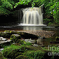 West Burton Falls In Wensleydale by Louise Heusinkveld