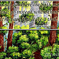 Where The Path Leads by Barbara Griffin