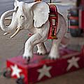 White Elephant by Garry Gay