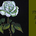 White Rose Invitation Card by Joyce Geleynse