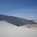 White Sands by Randy  Rhodes