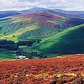 Wicklow Way, Co Wicklow, Ireland Long by The Irish Image Collection
