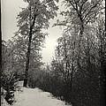 Winter Mood by Tibor Puski