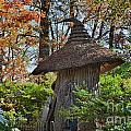 Winterthur Gardens by John Greim
