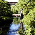 Wissahickon Creek  by Bill Cannon