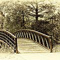 Wooden Bridge by Madeline Ellis