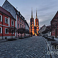 Wroclaw Cathedral by Sebastian Musial