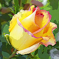 Yellow Rose by Anne Mott