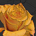 Yellow Rose Art by Debbie Portwood