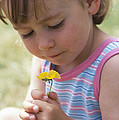 Young Girl With A Flower by Ian Boddy