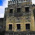 Zanzibar Old Fort by Darcy Michaelchuk