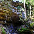 Ash Cave by Brian Stevens