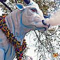 Rex Mardi Gras Parade by Steve Harrington