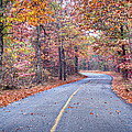 1010-4486 Petit Jean Autumn Highway by Randy Forrester