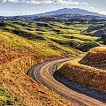 Landscape by Les Cunliffe