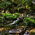 Lost Girl Creek by Grover Woessner