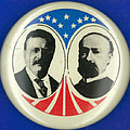 Presidential Campaign: 1904 by Granger