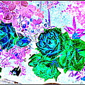 Flowers Flowers And Flowers by Anand Swaroop Manchiraju
