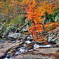 Cunningham Falls by Mark Dodd