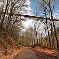New River Gorge Bridge by Mary Almond