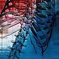 Torso Skeleton by Joseph Ventura