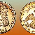 1825 Rainbow Capped Bust Half Dollar  by Jim Carrell