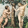 1863 Adam And Eve From Zoology Textbook by Paul D Stewart