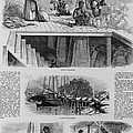 1869 Illustration Show Ex-slaves, Now by Everett