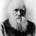 Charles Robert Darwin, English by Science Source