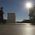 Honor Guard At The Tomb by Terry Moore